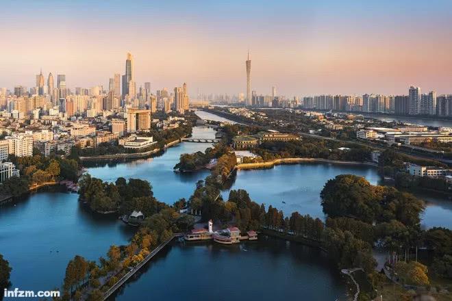 广州就像一棵树,故事沉淀在年轮里