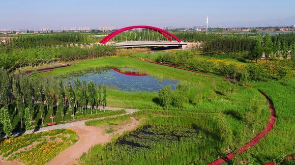 陕西西咸新区海绵城市样板:一座透水的城,人均绿地21�O