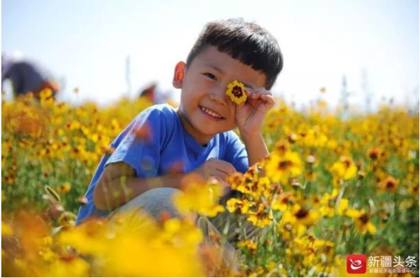 田园采摘乐,新疆乡村旅游提档升级