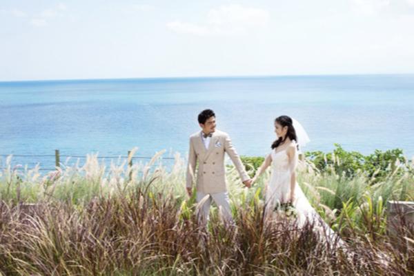 杨烁结婚照浪漫温馨  海岛上谱写爱的篇章