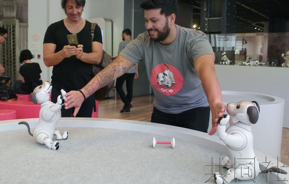 索尼在美发售新款机器狗aibo 力图重振品牌