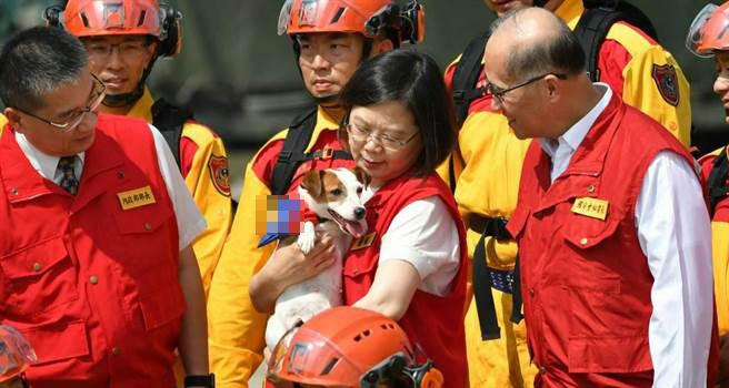 """蔡英文手抱的搜救犬来头不小,不过台官员却加戏:能助台""""外交""""……"""
