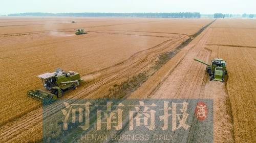 """河南从""""国民粮仓""""升级为""""国人厨房 粮食和肉类加工能力居全国首位"""