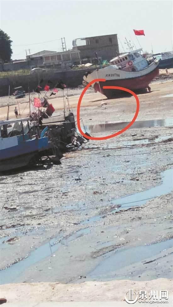 泉州:七旬阿婆遗体悬挂渔船缆绳上 警方初步排除他杀