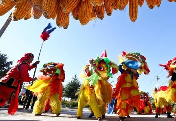甘肃张掖:乡村里的农民丰收节