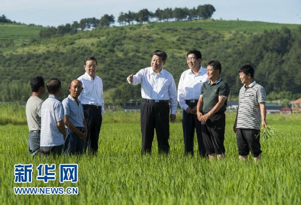 """写在首个""""中国农民丰收节"""":喜看稻菽千重浪亿万农民庆丰收"""