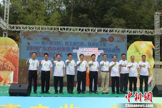广东麻榨镇一个杨桃最高拍卖出18万元人民币