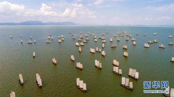 云南滇池:开湖季 捕鱼忙