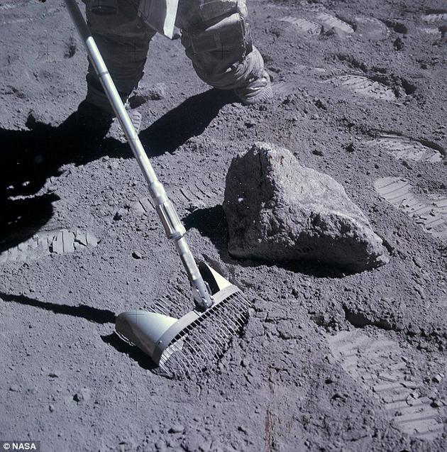 寒武纪生命大爆发:可能并非由陨石撞击引发