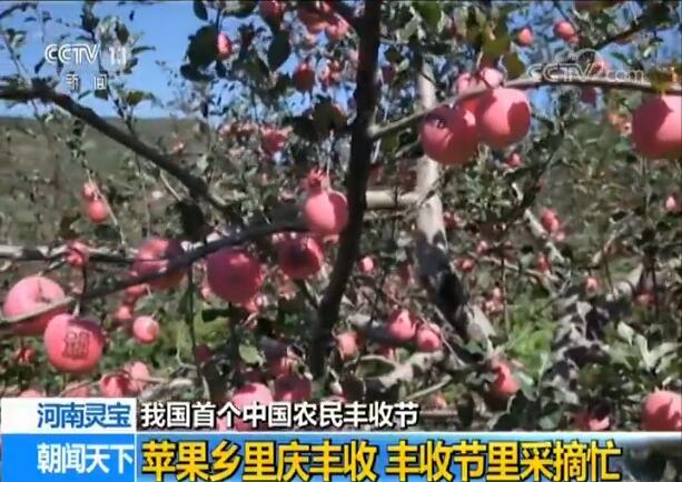 【我国首个中国农民丰收节】各地农民欢庆丰收