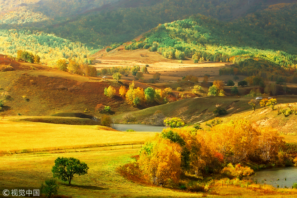 秋日乌兰布统:上帝的调色盘