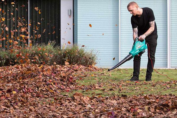 会玩!英艺术家用树叶吹出巨幅《蒙娜丽莎》