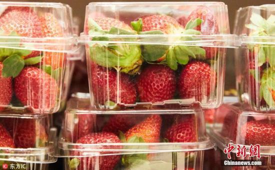 草莓藏针案扩大至新西兰 奥克兰市一家超市中招
