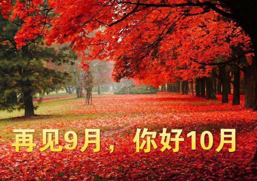10月初,桃花运旺,喜事连连的3大生肖