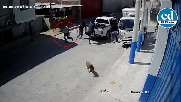 厄瓜多尔一企业主遇六歹徒绑架勇敢反击成功逃脱