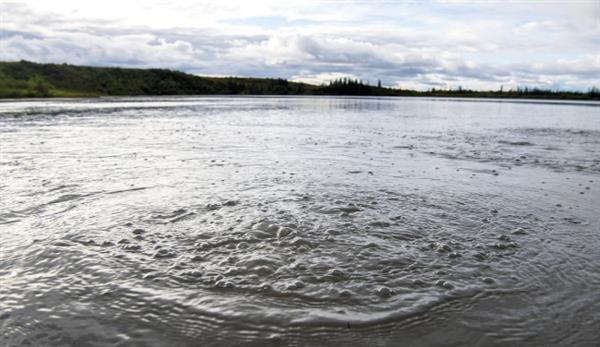 一个会咕噜咕噜冒泡的湖:藏着惊人秘密