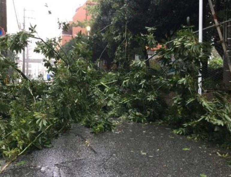 """台风""""潭美""""致日本冲绳大面积停电"""