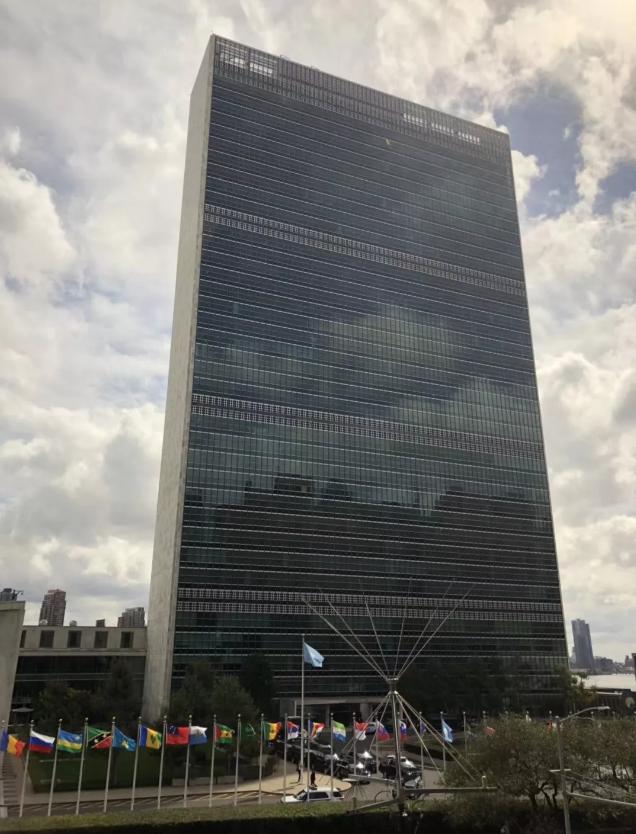 联合国可持续发展目标下:一位艺术家为艺术教育的实践与分享