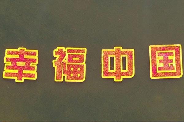 """农民用近万斤荷包红鲤鱼拼""""幸福中国""""迎国庆"""