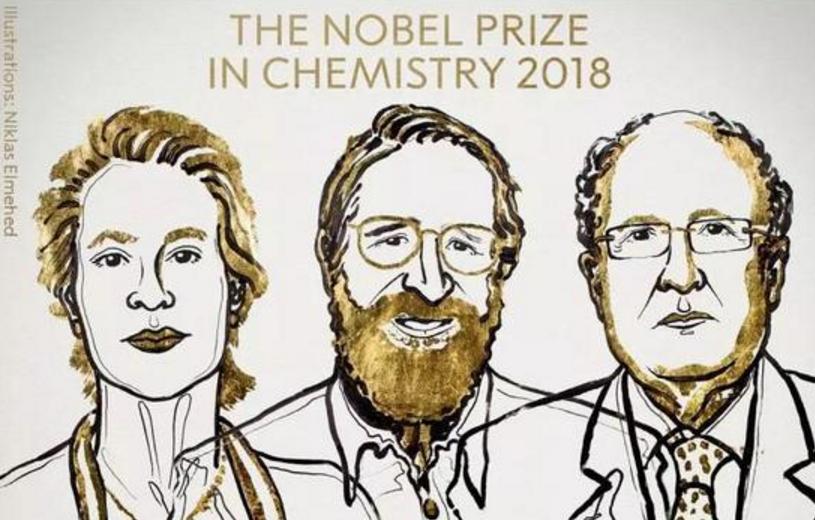 """女性的胜利:""""进化""""的诺贝尔化学奖"""