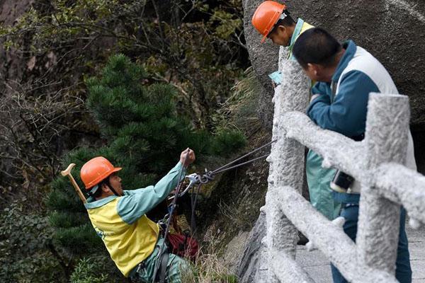 景区悬崖捡垃圾清洁工:靠1根绳索走峭壁