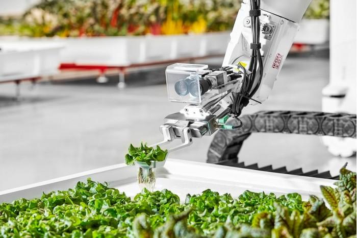 Iron Ox首个完全自动的室内农场已经开业