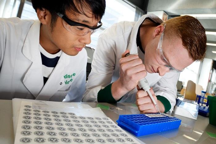 科学家研制低成本纸质血液检测工具 光斑色泽可揭示是否感染