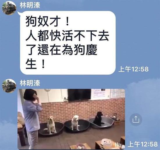 蔡英文为认养导盲犬庆生遭讽