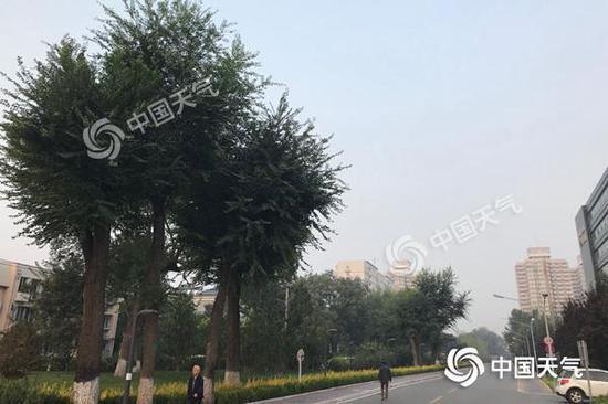 今晨,北京海淀雾气出没。