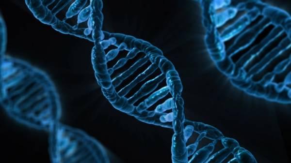 科学家发现人体3种基因变异:与背部疼痛密切相关