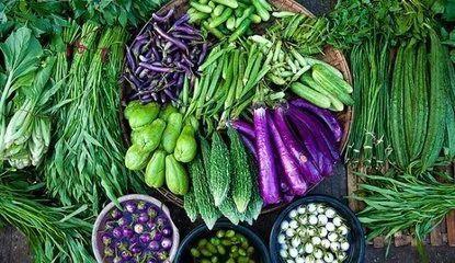 有机食品、转基因食品哪个更安全? 答案可能和你想的不一样