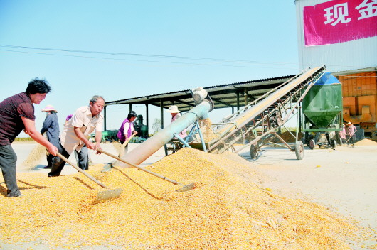 """收玉米用上""""大数据"""" 感受新技术的威力"""