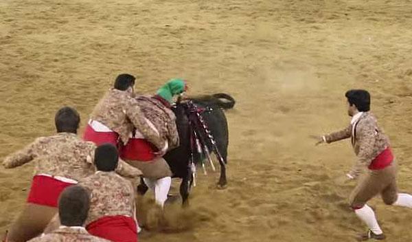葡萄牙一斗牛士被公牛撞倒在地致癫痫发作