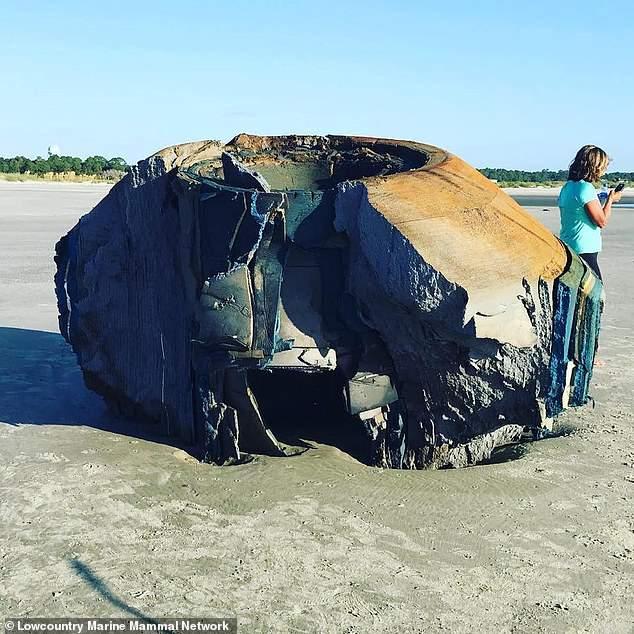 """美国南加州海岸上惊现神秘""""太空垃圾"""""""