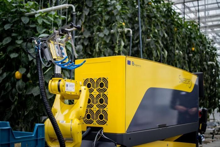 以色列等国研究人员开发出甜椒采摘机器人