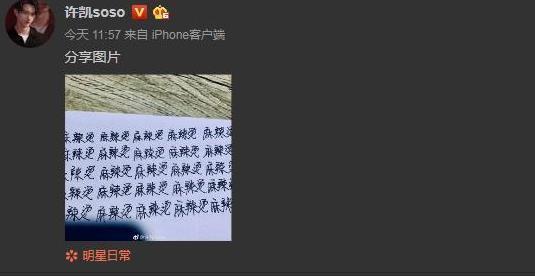 许凯为粉丝签名3字错2字,自己罚抄100遍麻辣烫