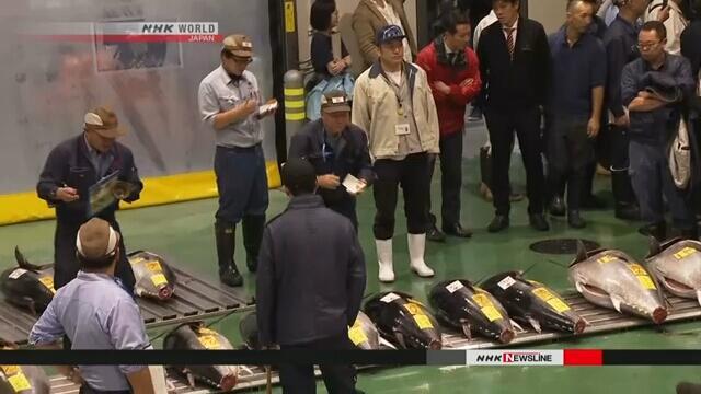 日本东京新丰洲市场正式开业 11日开始收场竞拍