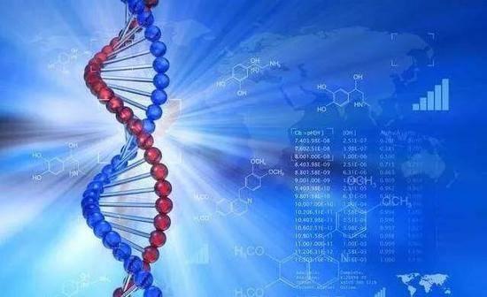 中国人南北方6大遗传差异被揭示:南方人免疫力更强