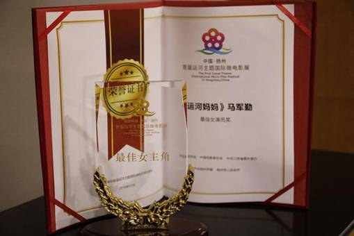 由中共高邮市委宣传部,江苏紫微星影文化传媒有限公司联合出品的微