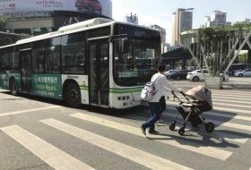 长沙市文明礼让日:开车不礼让行人需合影集赞