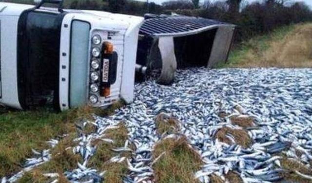货车发生意外侧翻,但是从里面掉出的东西,却没一人上前哄抢