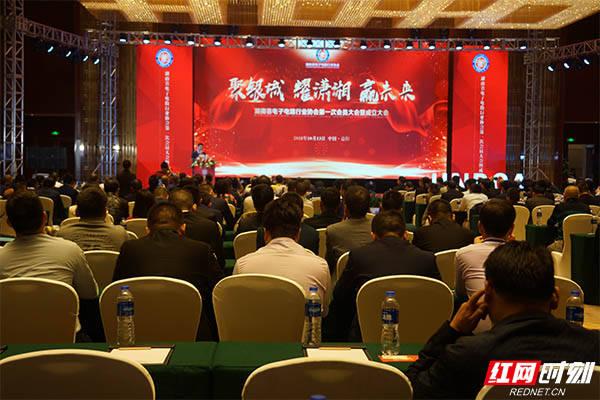 湖南省电子电路行业协会在益阳成立