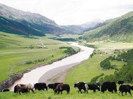 国家公园,留下珍贵的自然遗产