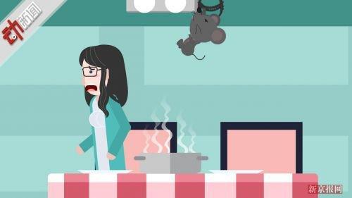 天花板掉出一只胖老鼠几桌客人被吓跑 店方:哪个餐馆没老鼠