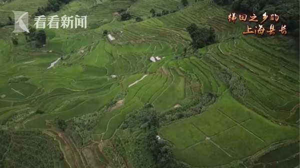 上海温度⑨:梯田之乡的上海县长