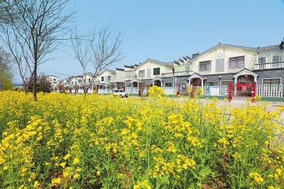 环境美了,农民富了,日子好了:美丽乡村建设为乡村振兴添活力
