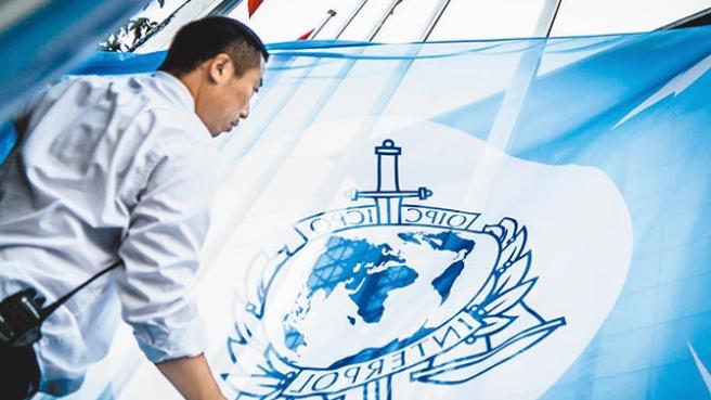 台当局又想敲开国际刑警组织大门,网友讽:白费力气