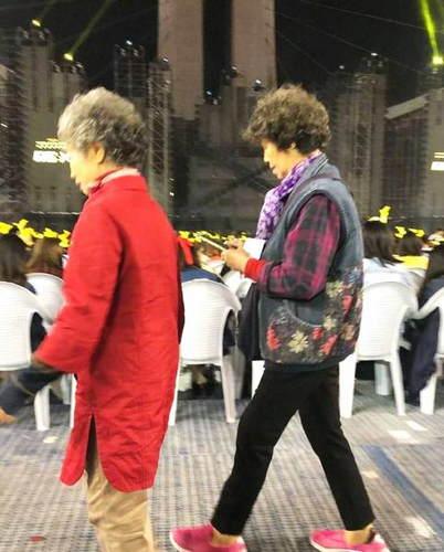 奶奶也追星!鹿晗演唱会奶奶粉举望远镜捧场