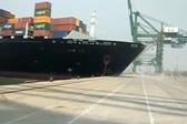 印度一巨型集装箱船掉头失败撞上码头