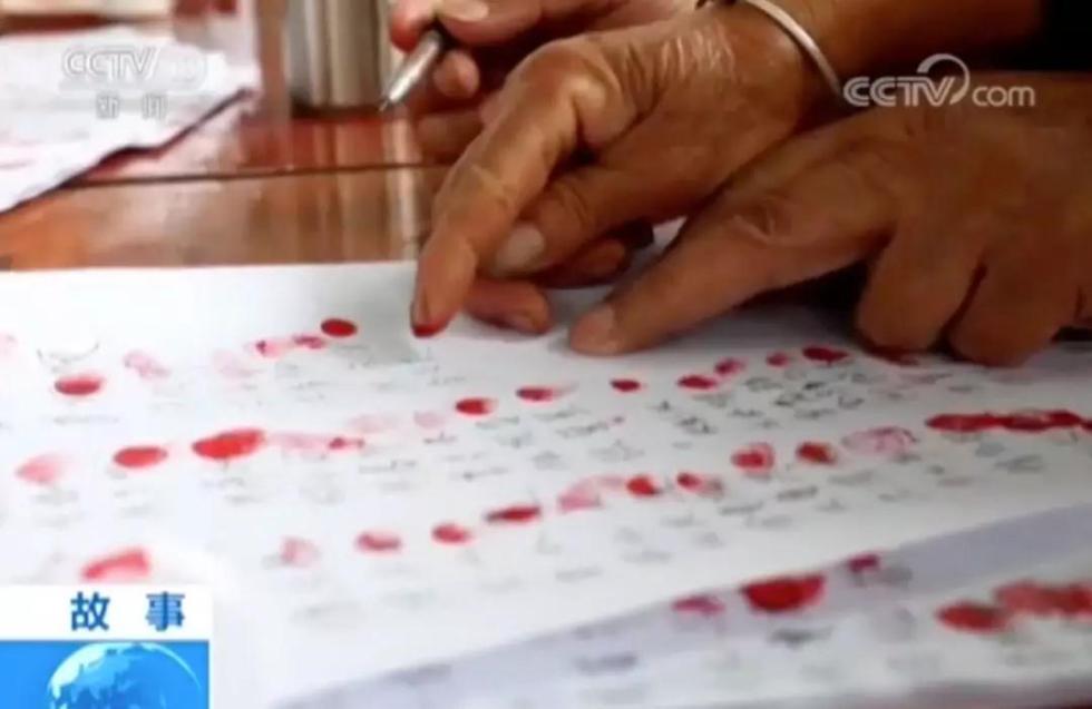 一张选票按有900多个红手印,背后的故事让人动容……